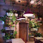 Фото Что украшает интерьер ресторана - 04062017 - пример - 070 interior of the restaurant