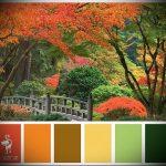 Фото Японские цвета в интерьере - 02062017 - пример - 026 Japanese colors in the interior