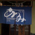 фото Японские шторы от 16.08.2017 №021 - Japanese Curtains 123123123232