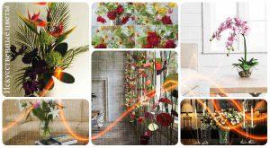 Искусственные цветы в интерьере - фото примеры интересных готовых проектов и идей