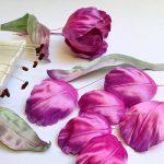 фото Искусственные цветы в интерьере от 26.03.2018 №010 - Artificial flowe - design-foto.ru