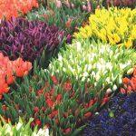 фото Искусственные цветы в интерьере от 26.03.2018 №102 - Artificial flowe - design-foto.ru