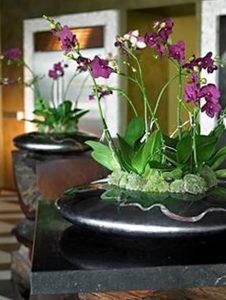 фото Как украсить интерьер цветами от 20.03.2018 №014 - flowers in the int - design-foto.ru