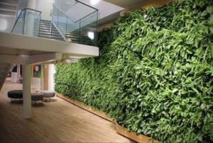 зеленая стена в интерьере 06.10.2019 №002 -green in the interior- design-foto.ru