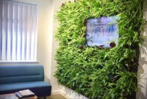 зеленая стена в интерьере 06.10.2019 №003 -green in the interior- design-foto.ru