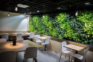 зеленая стена в интерьере 06.10.2019 №004 -green in the interior- design-foto.ru