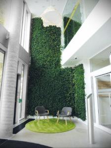 зеленая стена в интерьере 06.10.2019 №005 -green in the interior- design-foto.ru