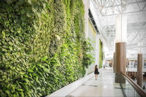 зеленая стена в интерьере 06.10.2019 №006 -green in the interior- design-foto.ru