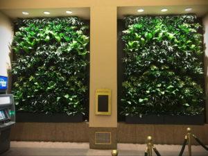 зеленая стена в интерьере 06.10.2019 №009 -green in the interior- design-foto.ru