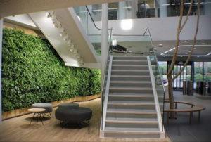 зеленая стена в интерьере 06.10.2019 №010 -green in the interior- design-foto.ru