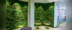 зеленая стена в интерьере 06.10.2019 №011 -green in the interior- design-foto.ru