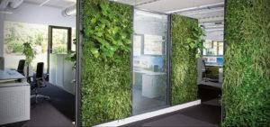 зеленая стена в интерьере 06.10.2019 №013 -green in the interior- design-foto.ru