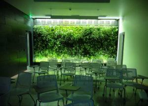зеленая стена в интерьере 06.10.2019 №025 -green in the interior- design-foto.ru