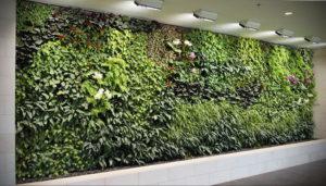зеленая стена в интерьере 06.10.2019 №027 -green in the interior- design-foto.ru