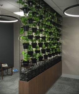 зеленая стена в интерьере 06.10.2019 №028 -green in the interior- design-foto.ru