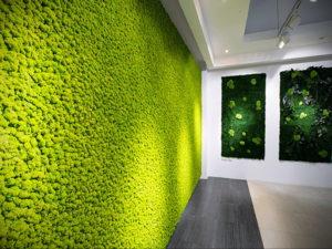 зеленая стена в интерьере 06.10.2019 №031 -green in the interior- design-foto.ru