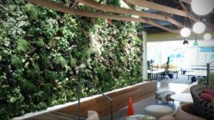 зеленая стена в интерьере 06.10.2019 №033 -green in the interior- design-foto.ru