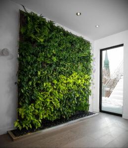 зеленая стена в интерьере 06.10.2019 №036 -green in the interior- design-foto.ru
