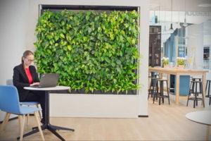 зеленая стена в интерьере 06.10.2019 №038 -green in the interior- design-foto.ru
