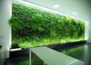 зеленая стена в интерьере 06.10.2019 №041 -green in the interior- design-foto.ru