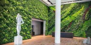 зеленая стена в интерьере 06.10.2019 №042 -green in the interior- design-foto.ru