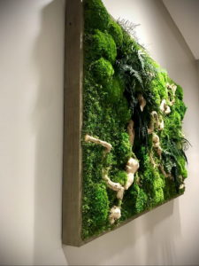 зеленая стена в интерьере 06.10.2019 №045 -green in the interior- design-foto.ru