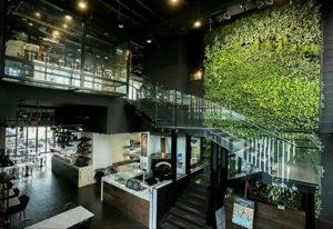 зеленая стена в интерьере 06.10.2019 №046 -green in the interior- design-foto.ru