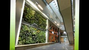зеленая стена в интерьере 06.10.2019 №052 -green in the interior- design-foto.ru