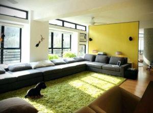 зеленый ковер в интерьере 06.10.2019 №013 -green in the interior- design-foto.ru