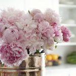 Фото Цветы в интерьере кухни от 26.09.2018 №052 - Flowers in the interior - design-foto.ru
