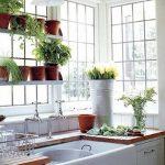 Фото Цветы в интерьере кухни от 26.09.2018 №175 - Flowers in the interior - design-foto.ru