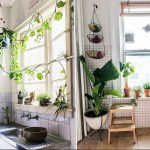 Фото Цветы в интерьере кухни от 26.09.2018 №200 - Flowers in the interior - design-foto.ru