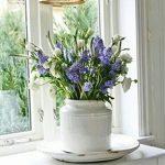 Фото Цветы в интерьере кухни от 26.09.2018 №213 - Flowers in the interior - design-foto.ru