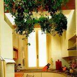 Фото Цветы в интерьере кухни от 26.09.2018 №223 - Flowers in the interior - design-foto.ru