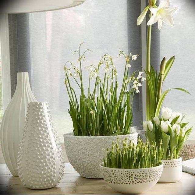 Цветы в интерьере кухни
