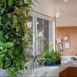 Фото Цветы в интерьере кухни от 26.09.2018 №253 - Flowers in the interior - design-foto.ru
