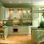 Фото Цветы в интерьере кухни от 26.09.2018 №277 - Flowers in the interior - design-foto.ru