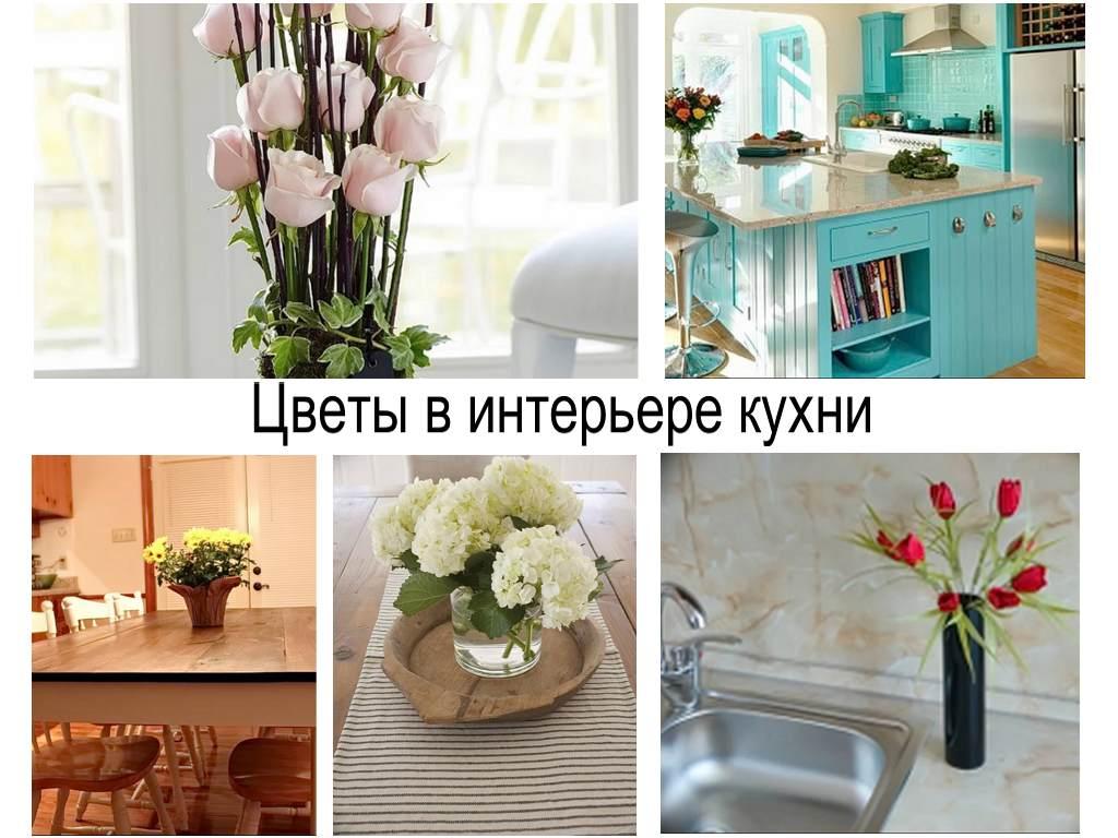 Цветы в интерьере кухни - коллекция готовых проектов и идей на фото