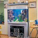 фото Аквариум в интерьере 28.11.2018 №012 - photo Aquarium in the interior - design-foto.ru