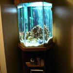 фото Аквариум в интерьере 28.11.2018 №029 - photo Aquarium in the interior - design-foto.ru