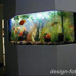 фото Аквариум в интерьере 28.11.2018 №045 - photo Aquarium in the interior - design-foto.ru