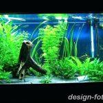 фото Аквариум в интерьере 28.11.2018 №066 - photo Aquarium in the interior - design-foto.ru
