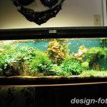 фото Аквариум в интерьере 28.11.2018 №070 - photo Aquarium in the interior - design-foto.ru