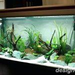 фото Аквариум в интерьере 28.11.2018 №072 - photo Aquarium in the interior - design-foto.ru