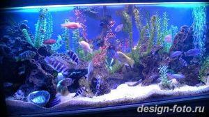 фото Аквариум в интерьере 28.11.2018 №084 - photo Aquarium in the interior - design-foto.ru