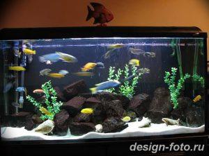 фото Аквариум в интерьере 28.11.2018 №085 - photo Aquarium in the interior - design-foto.ru