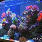 фото Аквариум в интерьере 28.11.2018 №086 - photo Aquarium in the interior - design-foto.ru