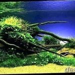 фото Аквариум в интерьере 28.11.2018 №087 - photo Aquarium in the interior - design-foto.ru