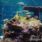 фото Аквариум в интерьере 28.11.2018 №109 - photo Aquarium in the interior - design-foto.ru