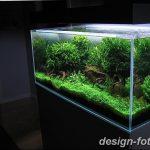 фото Аквариум в интерьере 28.11.2018 №110 - photo Aquarium in the interior - design-foto.ru